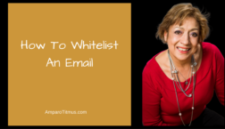 how-to-whitelist-an-email