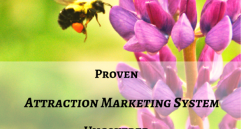 attraction marketing system