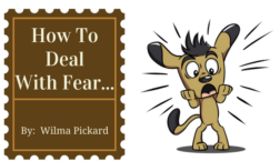 How To Deal With Fear...
