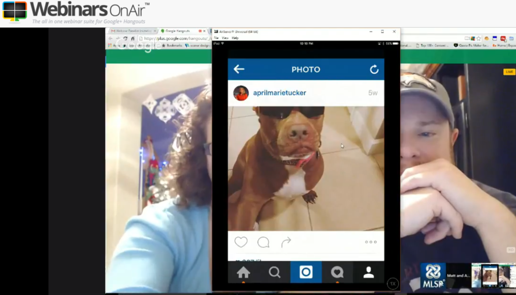 Puppy Love And How To Bullet-proof your Instagram Account