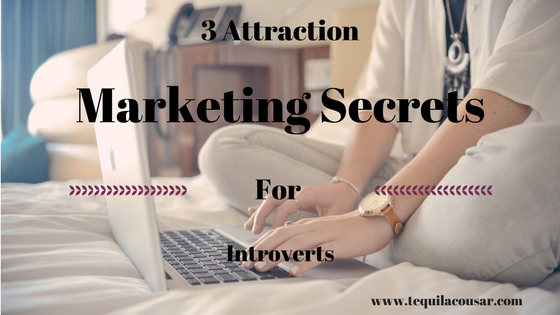 3 Attraction Marketing Secrets For Introverts