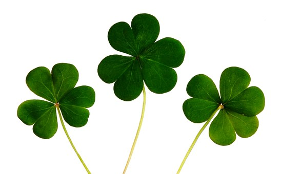 How Much Does Luck Have to Do With Startup Success?
