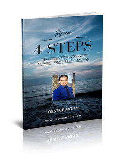 rsz_14_steps_ebook_cover