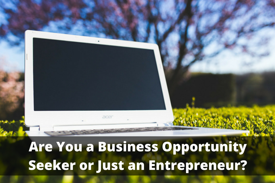 Are You a Business Opportunity Seeker or Just an Entrepreneur?