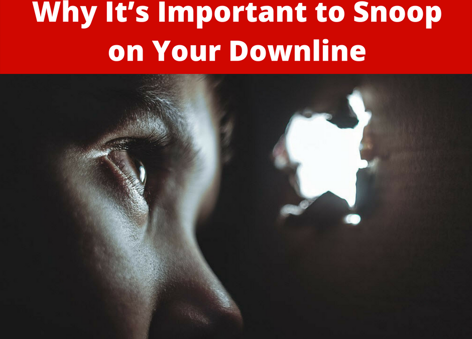 Why It's Important to Snoop on Your Downline | Network Marketing Tips
