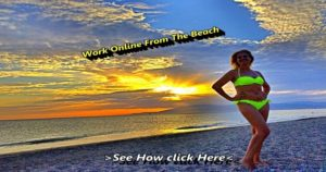 Work Online From The Beach