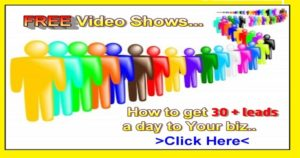 How to get 30 leads a day to your online business and offers