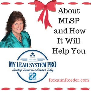 About MLSP and How It Will Help You Make Money Online
