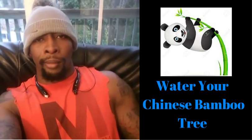 Water Your Chinese Bamboo Tree