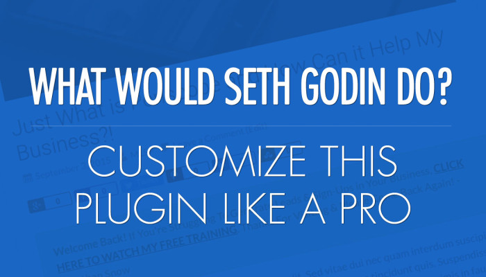 Customize the What Would Seth Godin Do Plugin Like a Pro!