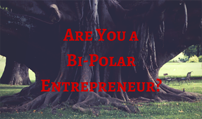 Are You A Bi-Polar Entrepreneur