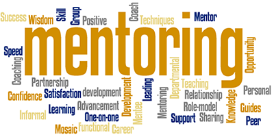 Mentoring and Coaching for Professionals
