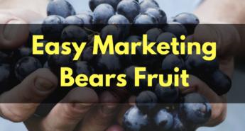 easy-marketing-bears-fruit