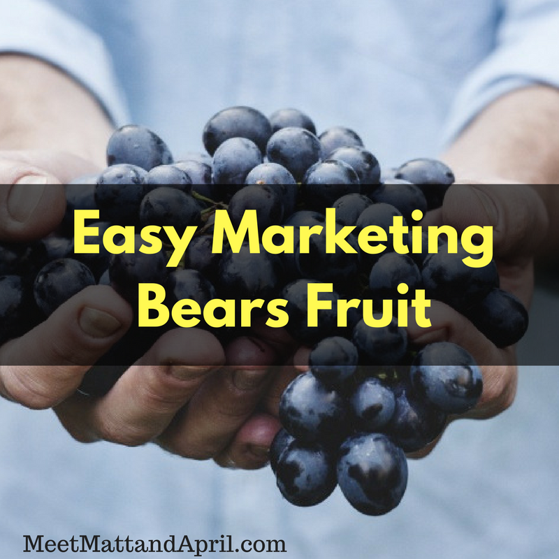 Easy Marketing Bears Fruit