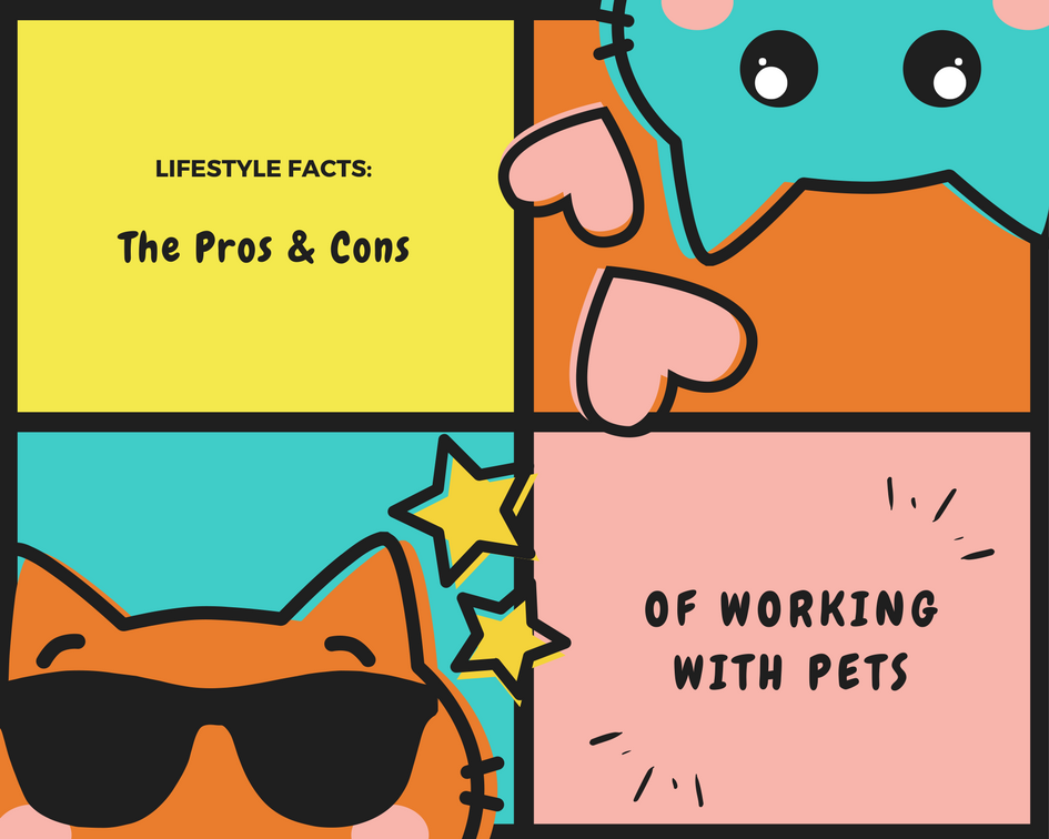 How To Profit From Your Passion For Pets