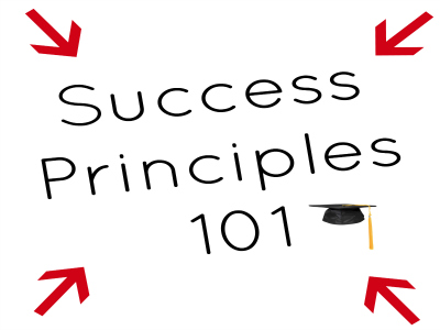 Success Principles 101