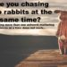 Are you chasing two rabbits at the same time in Network Marketing?
