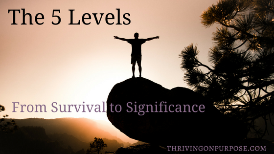 The 5 Levels from Survival to Significance
