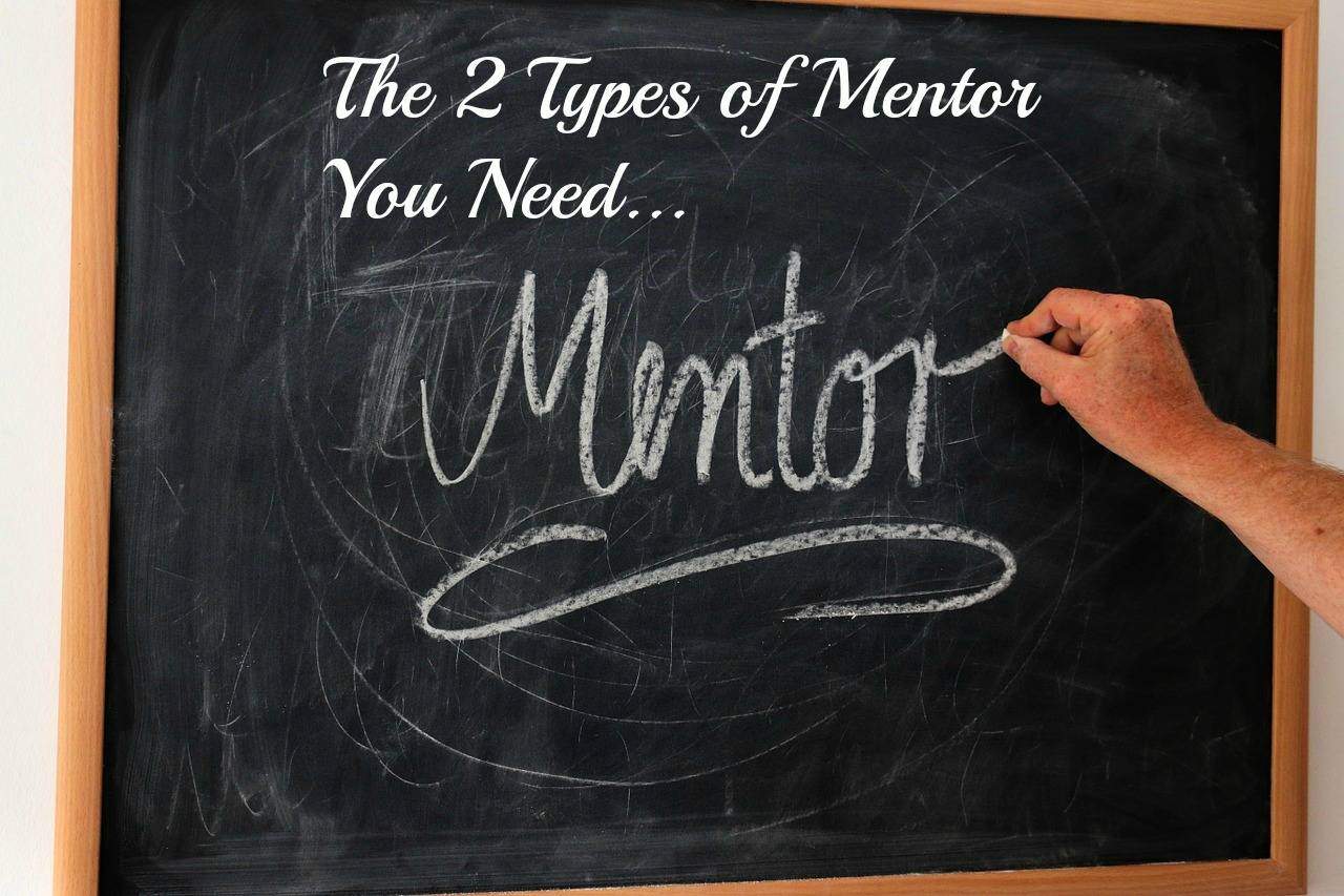 The 2 Types of Network Marketing Mentor You Need