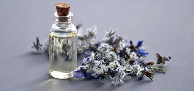 Break the Fragrance Rules