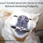 Network Marketing Prospects