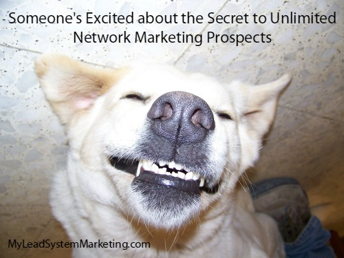 Get Network Marketing Prospects with Attraction Marketing