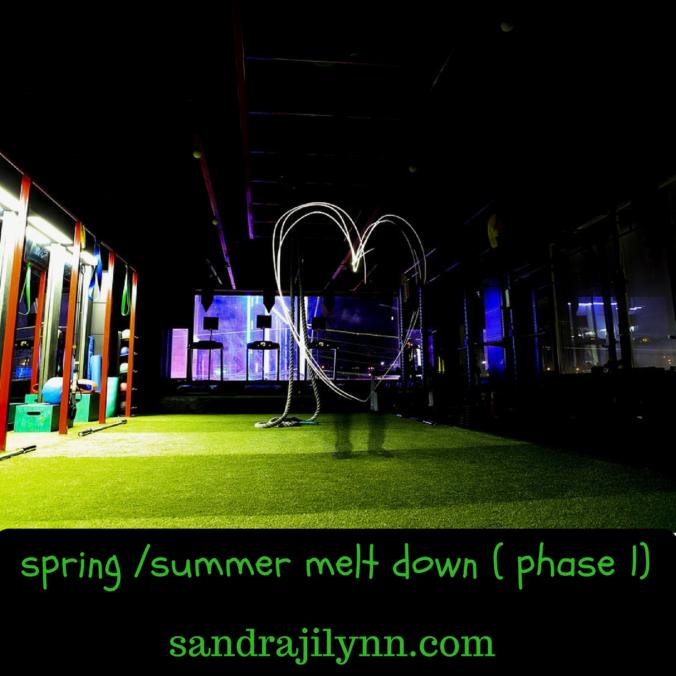 spring-%2fsummer-melt-down-phase-1