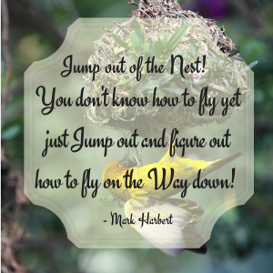 Jump out of the Nest