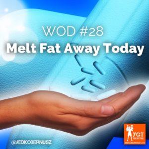 Melt Fat Away Today