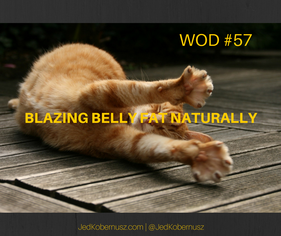 Blazing Belly Fat Naturally