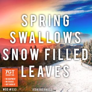 Spring Swallows Snow Filled Leaves