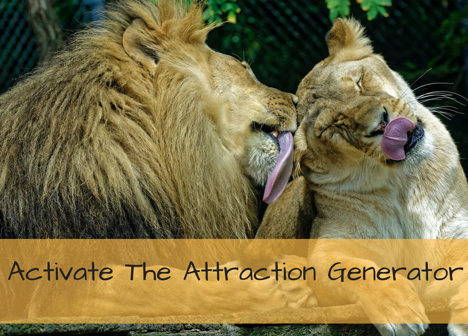 Activating The Attraction Generator
