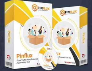 pinflux1