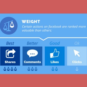 facebook algorithm what is weight