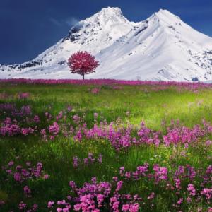breathtaking_scenery