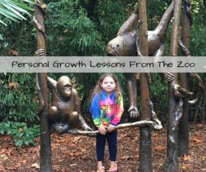 Personal Growth Lessons From The Zoo