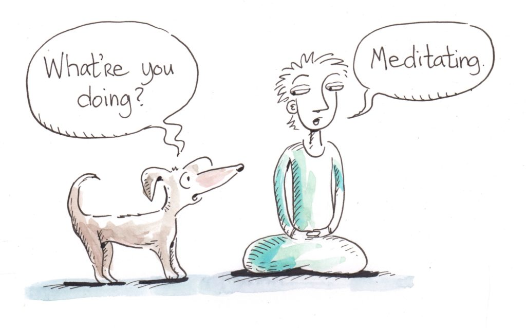 what-are-you-doing-meditating