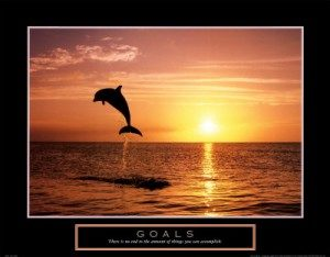 f102363goals-dolphins-posters-300x234
