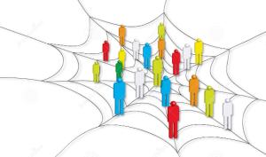network_spiderweb
