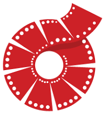 vidrise logo