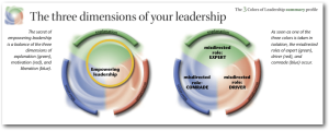 leadership summary