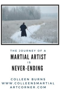 Martial art journey