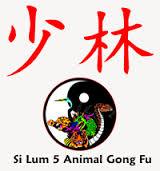 sil-lum-kung-fu-min