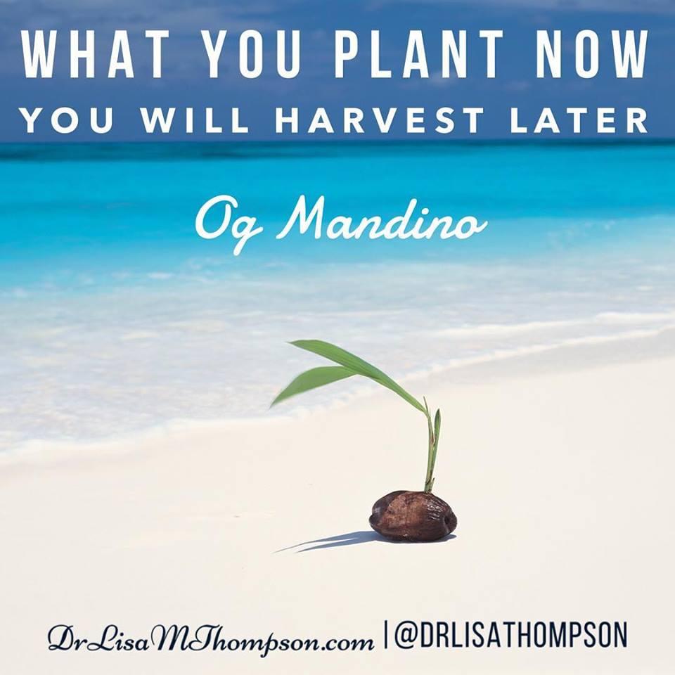 Og Mandino Quotes: 15 Inspirational Og Mandino Quotes To Always Take Action