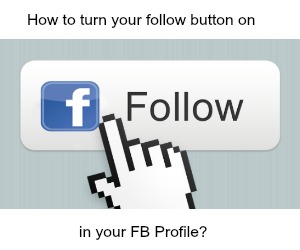 FB Follow Buttin