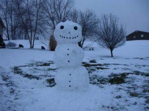 snowman 2015 Barbara Arbster