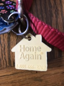 Pet Identification Tags
