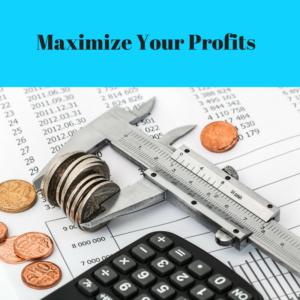 Maximize Profits
