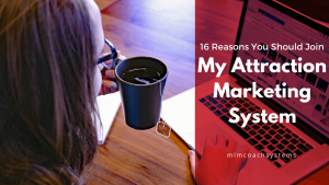 Attraction Marketing System Wide