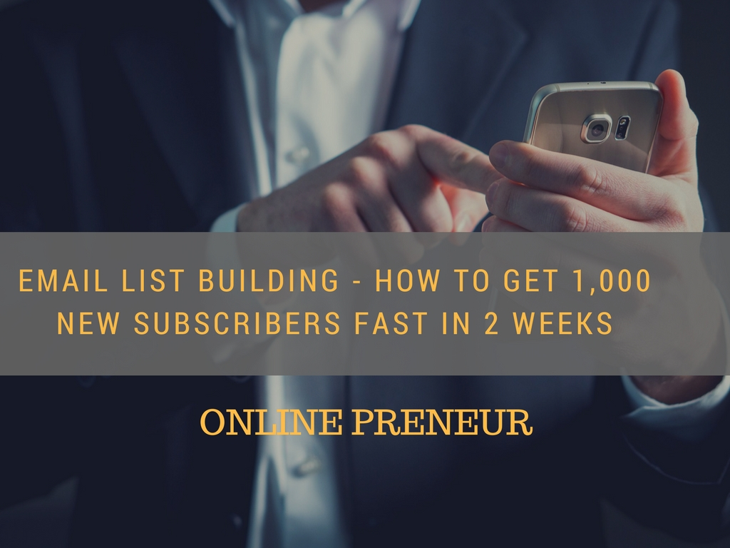 Email List Building - How to Get 1,000 New Subscribers Fast in 2 Weeks